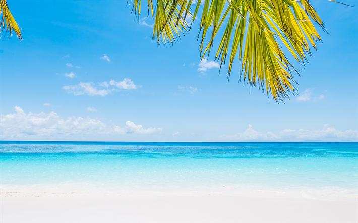 Scarica Sfondi Paesaggio Di Mare Oceano Spiaggia