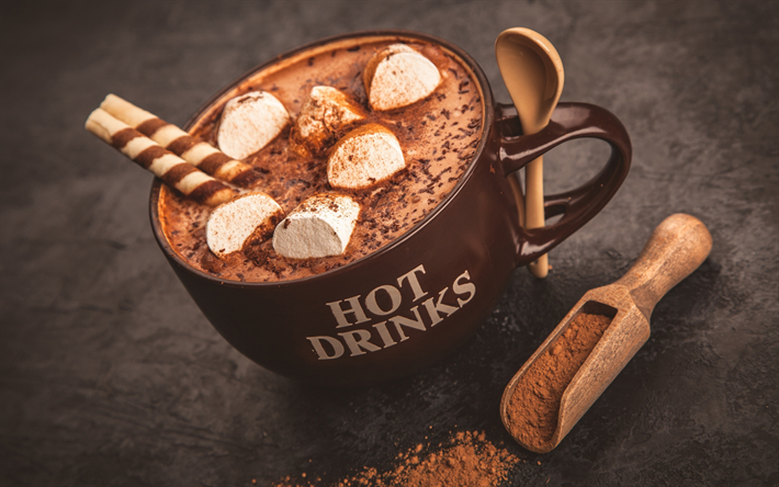Hot chocolate, sweets, cup, marshmallows, chocolate, spices, hot drinks