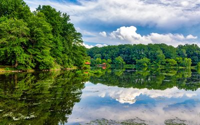 Lake Elkhorn, 4k, USA, beautiful nature, Columbia, America, Maryland, summer