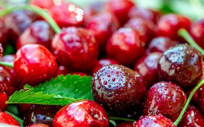 cherries, berries, fruits, ripe cherries, drops of water on berries