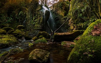 waterfall, forest, jungle, beautiful waterfalls, El Sallent, Catalonia, Spain
