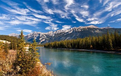 river, mountains, summer, USA, forest, mountain landscape