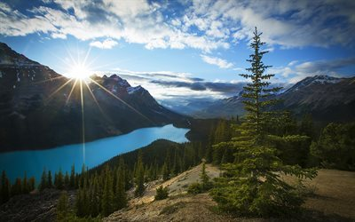 Peyto Lake, sunset, mountains, Banff National Park, summer, forest, Alberta, Canada