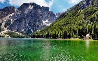 Lago di Carezza, summer, forest, lakes, mountains, Italy