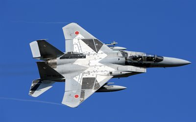 Mitsubishi F-15J, Japanese fighter, Japan Air Self-Defense Force, JASDF, F-15DJ, Mitsubishi Heavy Industries, F-15 Eagle, McDonnell Douglas