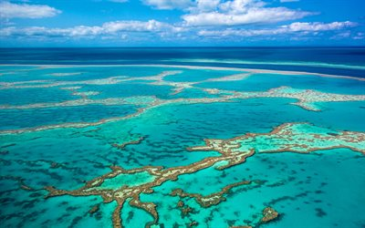 Great Barrier Reef, 4k, Coral Sea, Whitsunday Island, Australia