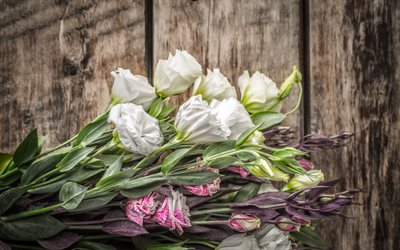 white eustoma, beautiful flowers, pink eustoma, branch with flowers