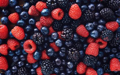 forest berries, raspberries, blueberries, blackberries