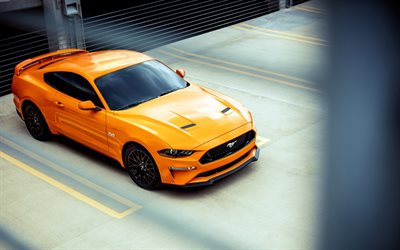 Ford Mustang GT, 2018, Fastback Sports, yellow sports coupe, American cars, supercar, Ford