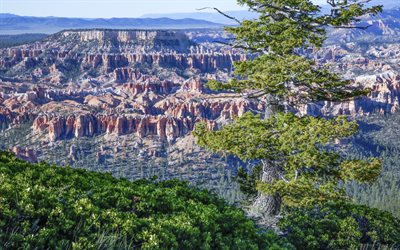 America, cliffs, mountains, Bryce Canyon National Park, Utah, USA