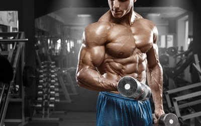 bodybuilding, exercise, dumbbell, abs, biceps, muscles, gym