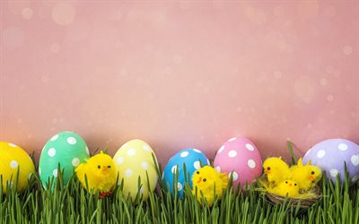 Spring decoration, pink background, Easter eggs, little chicken, Easter