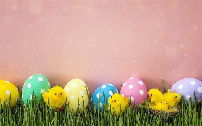 Hintergrundbilder Kostenlos Ostern herunterladen hintergrundbild frühling dekoration rosa hintergrund