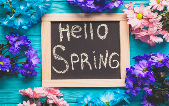 Hello Spring Flowers Season Concepts Blue Wood Background