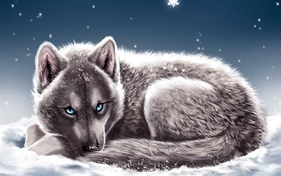 wolf, snowdrifts, winter, snowflakes, blue eyes, fantasy art, predators