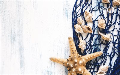 starfish, summer travel concepts, seashells, blue mesh, summer, wooden background