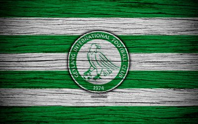 Geylang International FC, 4k, Singapore Premier League, soccer, Asia, football club, Singapore, Geylang International, wooden texture, FC Geylang International