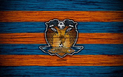 Hougang United FC, 4k, Singapore Premier League, soccer, Asia, football club, Singapore, Hougang United, wooden texture, FC Hougang United