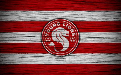 Young Lions FC, 4k, Singapore Premier League, soccer, Asia, football club, Singapore, Young Lions, wooden texture, FC Young Lions
