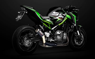 Kawasaki Z900, 2021, side view, exterior, new green Z900, japanese motorcycles, sport bike, Kawasaki