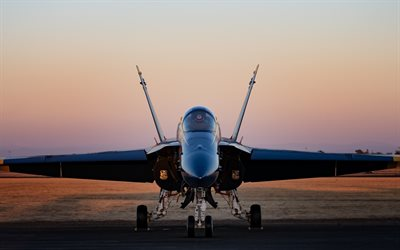 mcdonnell douglas cf-18 hornet, royal canadian air force, fighter aircraft, rcaf, combat aviation, kanada