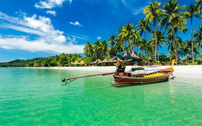 Ko Samui, tropical island, palm trees, beach, summer travel, Thailand, Kra Isthmus