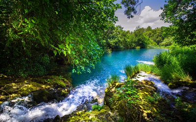 Summer, forest, river, beautiful nature, Krka River, Croatia, Krka National Park