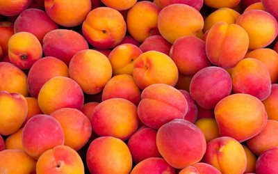 peaches, fruit background, mountain of peaches, ripe fruits, background with peaches
