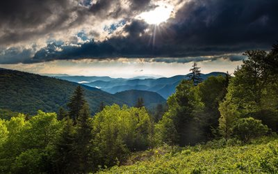 mountain landscape, evening, sunset, forest, green trees, summer, thunderclouds