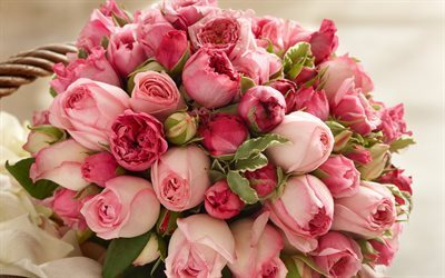 pink roses, rose bouquet, pink flowers, roses