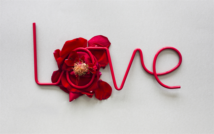 Love concepts, romance, red rose petals, the word love, February 14, creative