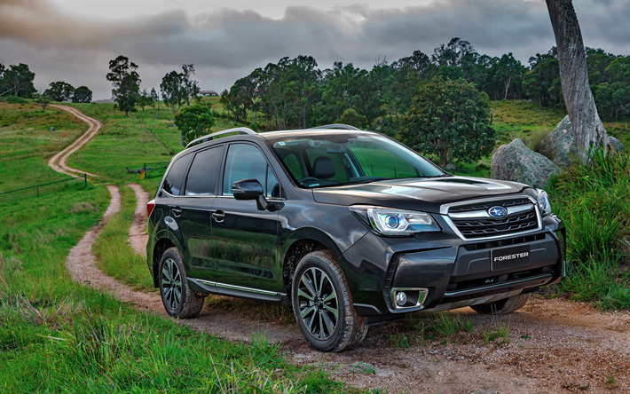 4k Subaru Forester Offroad 2017 Cars Crossovers Balck