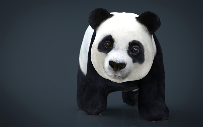 Download Wallpapers Panda 4k 3d Art Funny Animals For
