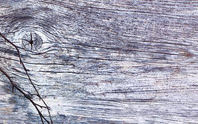 gray wooden texture, 4k, wood backgrounds, gray backgrounds, wooden textures, wooden backgrounds, gray wood