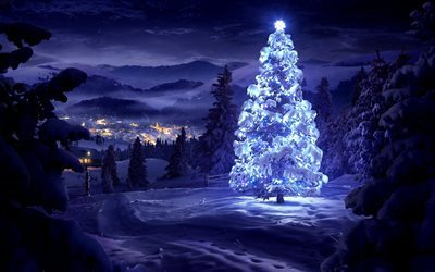 New Year Eve, winter, night, Forest, Christmas Tree, Christmas
