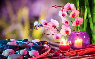 4k, SPA, orchids, candles, bamboo, plate, stones