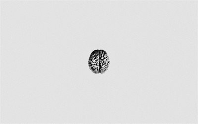 human brain, white paper background, mind, paper texture, mind concepts, intelligence, brains