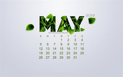 2019 May Calendar, creative flower art, white background, green leaves, spring, 2019 calendars, May, eco concept, calendar for 2019 May