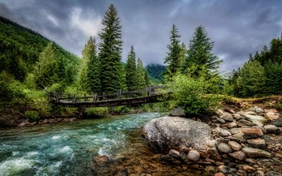 Duffey Lake Provincial Park, 4K, mountain river, forest, HDR, summer, Canada, British Columbia, beautiful nature