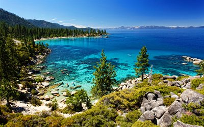 Tahoe Lake, 4k, summer, forest, beautiful nature, Sierra Nevada, USA, american nature, America
