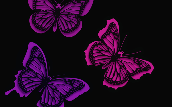 Download Wallpapers Butterflies Black Background Minimal Creative For Desktop Free Pictures For Desktop Free