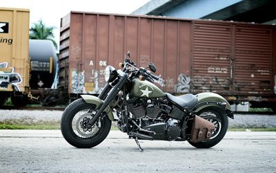 Harley-Davidson Softail Slim S, exterior, side view, military style, new green Softail Slim S, american motorcycles, Harley-Davidson