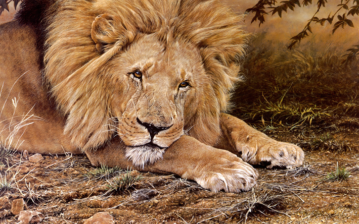 lion, africa, wildlife, wild animals, lions, painted lion