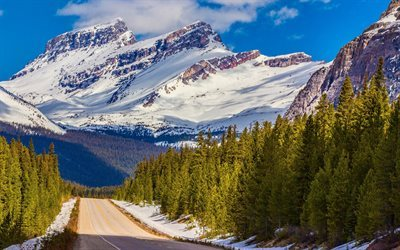mountain landscape, forest, road, mountain, USA, banff national park