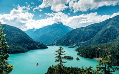 Ross Lake, forest, mountains, summer, Washington, USA, America