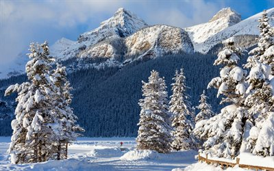 4k, Banff, snowy mountains, Alberta, winter, snowdrifts, North America, Banff National Park, beautiful nature, Canada
