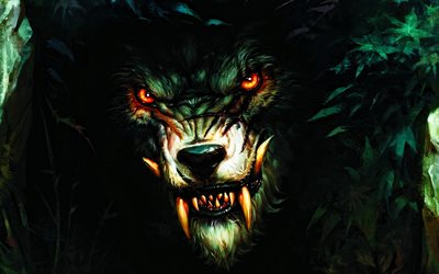 werewolf, artwork, wolf, fantasy art, wildlife, predators, angry wolf