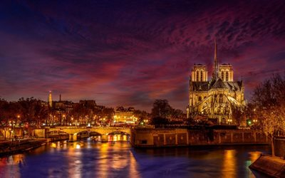 Notre Dame de Paris, Catholic cathedral, evening, autumn, river, city lights, landmark, Paris, France