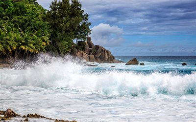 Seychelles, Indian Ocean, storm, big waves, the ocean, palm trees, Police Bay
