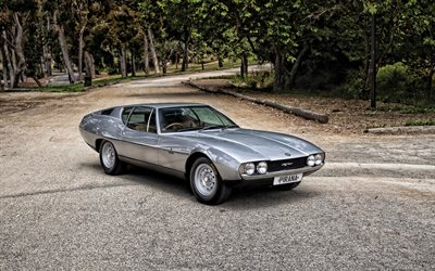 Jaguar Pirana, Bertone 1967, exterior, front view, silver E-Type 1967, silver Pirana, British retro cars, Jaguar
